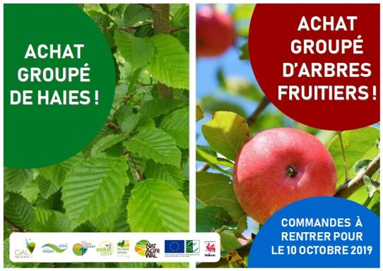 image Achat_group_haies_et_fruitiers.jpg (0.3MB)