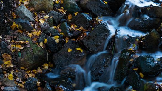 image waterfall142636_1920.jpg (0.7MB)